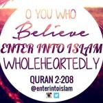 Enter Into islamWholeheartedly