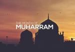 ✒*Beneficial Fatawa*✒